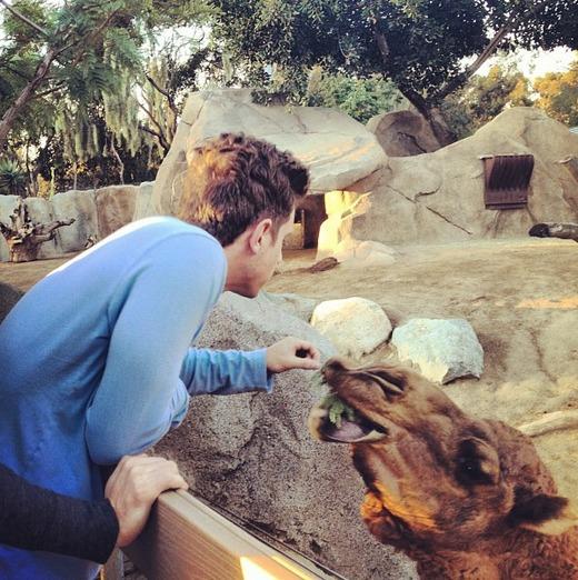 jef zoo